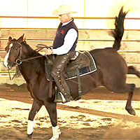 Training horses that buck, rear, bite and kick