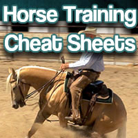 Horse training cheat sheets