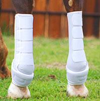 Icononoclast extra tall hind boots
