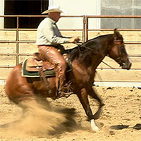 How to train a horse to rollback and spin