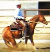 Horse training with the hackamore & snaffle bit