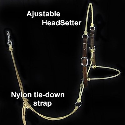 Teach your horse good head position with this HeadSetter
