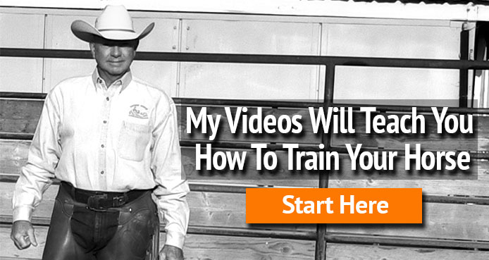 My videos teach you how to train your horse