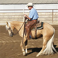How to train your horse to lope slow with complete control