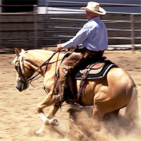 Horse being taught a reining sliding stop