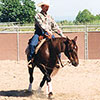 Train your horse to rollback and spin