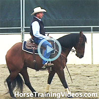 Training a horse to stop & back up