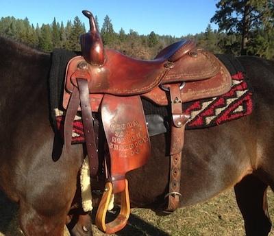 saddle1b